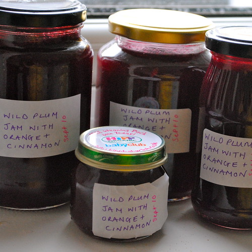 foraging and preserving