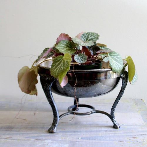 who says you can't have plants or flowers in vintage hotel silver via ethan ollie on etsy