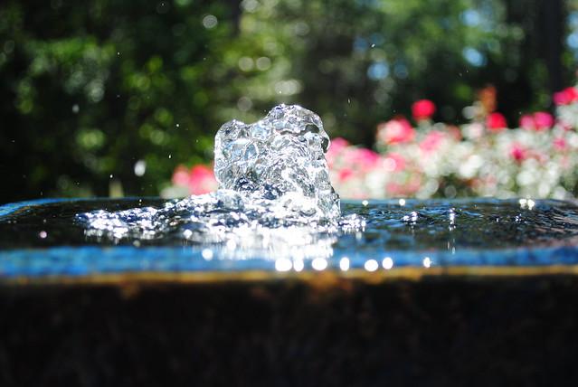 W2,D1, Water 1/640