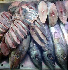 Ruedas (carlosmaco) Tags: fish venezuela domingo pulpo mariscos mero carite laguaira cazon litoralcentral mosquero picua estadovargas mercadopescado