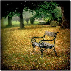 The Empty Bench (pixel_unikat) Tags: park autumn garden bench austria empty explore colourful textured idream thankstoskeletalmessfortextures