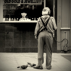 The shopkeeper (Maureen F.) Tags: street toronto man birds pigeons sidewalk oldgold yongest jewelleryshop ohya selectbestexcellence sbfmasterpiece oldgoldbringmeyouroldgold