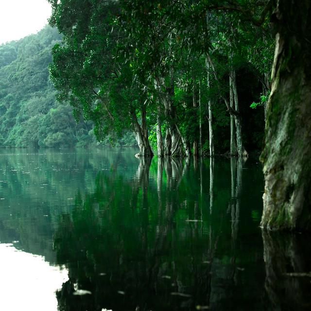 城門水塘 / Shing Mun Reservoir