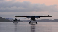 Rotorua Floatplanes (blue polaris) Tags: newzealand lake plane airplane landscape island volcano scenery rotorua jetty crater nz northisland floatplane mokoia