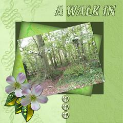 A Walk in September woods lhs