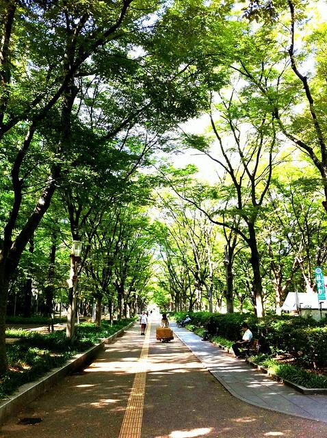 今日の写真 No.28 – 靭公園/iPhone4