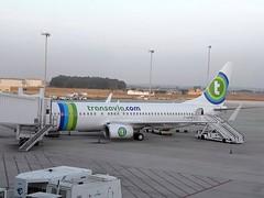 F-GZHE (PoliSpotter) Tags: transaviaairlines boeing7378k2 fgzhe sevillasanpablosvqlezl cn296782615