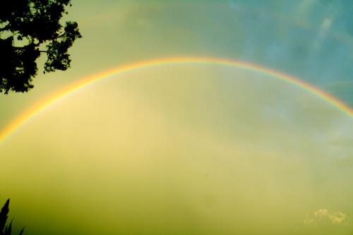 A Full Rainbow