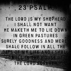 The Lord is My Shepherd, I Shall Not Want