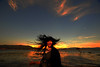 Flames (Jonathan Kos-Read) Tags: china sunset red lake girl yellow messyhair asiangirl sigma14mmf28ex deletedbydeletemeuncensored