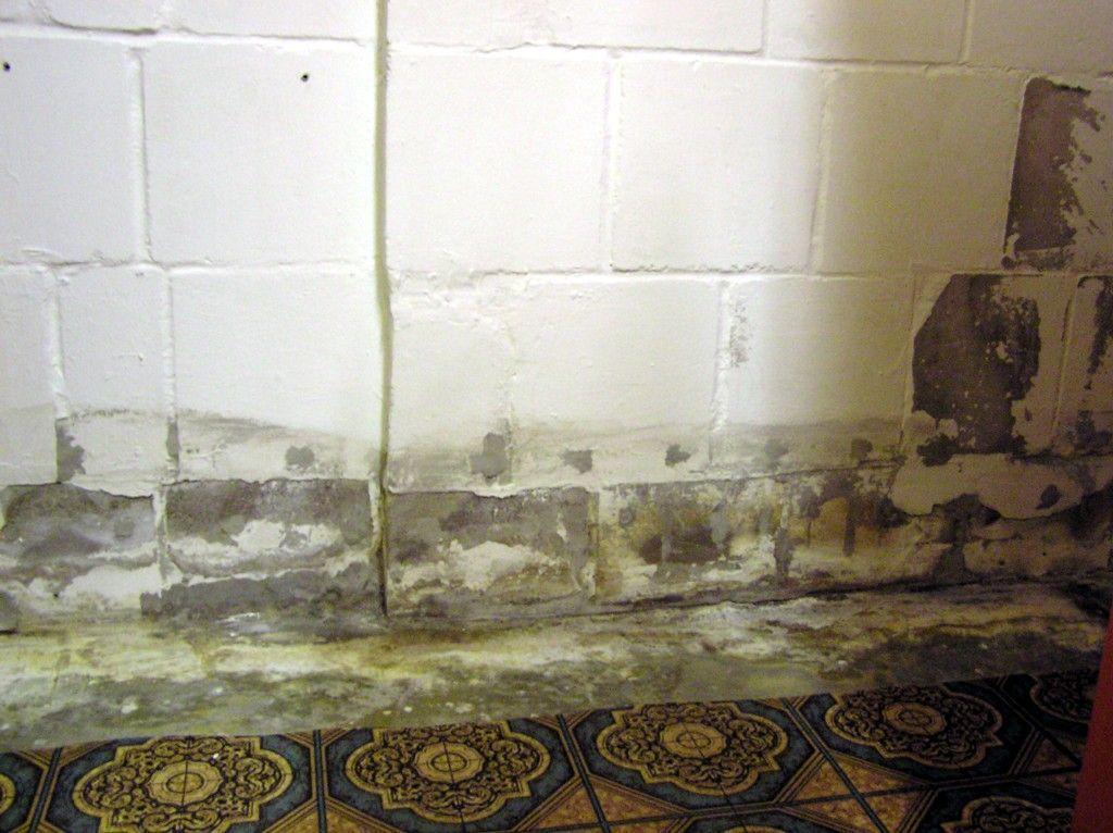 salpeter im keller nasse wnde with salpeter im keller an einer klinkerwand with salpeter im. Black Bedroom Furniture Sets. Home Design Ideas