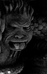 Lurking Gargoyle (mysunsin) Tags: dragon divine gargoyle grotesque