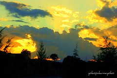 Puesta de sol en Cerdeña*ALLA  MEMORIA DI RAFAEL-ANGEL**ADIOS AMIGO** (yokopakumayoko) Tags: sardegna italia tramonto colori nuoro dedicatedphoto allxpressus saariysqualitypictures tramontidisardegna sunsetinsardinia puestadesolencerdeña tramontiinbarbagia