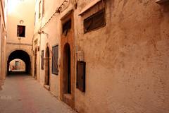 Essaouira (206) (David OMalley) Tags: ocean africa old sea urban cosmopolitan ancient market muslim islam north markets mosque historic atlantic arabic exotic morocco berber arab maroc bazaar oriental orient souq moroccan islamic berbers bazaars