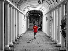 Lucas (Luiz C. Salama) Tags: boy red bw rio brasil riodejaneiro canon cutout kid rj garoto going pb vermelho jardimbotanico perspectiva jb indo menino arcos guri g11 pontodefuga cidadesbrasileiras