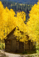 Crystal Cabin (Jim Boud) Tags: camera blue autumn mountain green fall leaves yellow canon eos leaf colorado crystal valley rockymountains aspen dslr digitalrebel photoart digitalslr firtree artisticphotography canon2470mmf28l jimboud t2i jamesboud eos550d kissx4