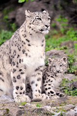 Kailash posing with her mother