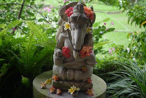 Ganesh decorated with Frangipani