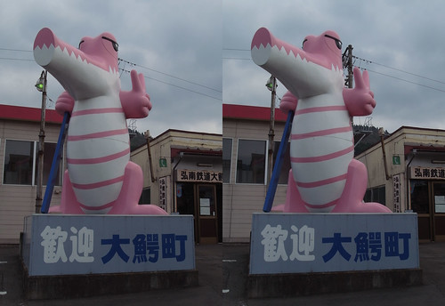 Mascot of Owani, stereo parallel view