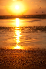 Greetings From Padre Island (pixelmama) Tags: beach sunrise bokeh gettyimages chasinglight padreislandtexas wormseyeviewsunday hwevs