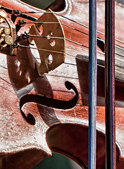 Violin Bridge (Walt Stoneburner) Tags: bridge red horse music art hair screw photo post image tail stock creative pad free commons holes frog musical violin f bow license strings stick piece chin scroll fingerboard sounding tailpiece pegbox tautness