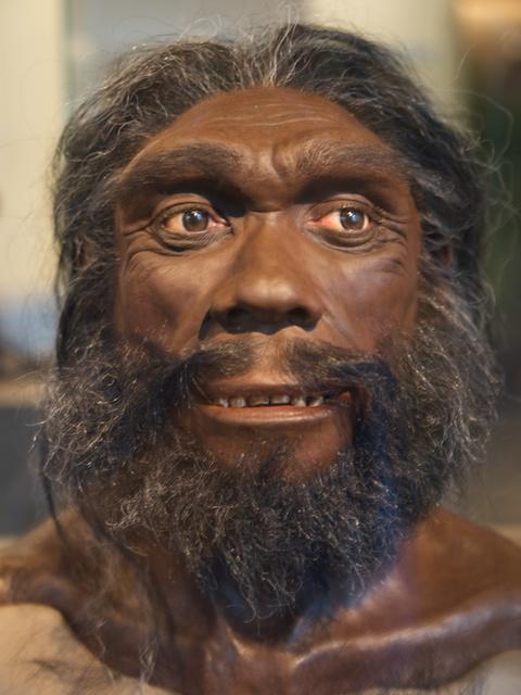 first homo sapiens found - photo #9