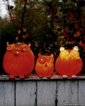 martha-stewart-owl-pumpkins