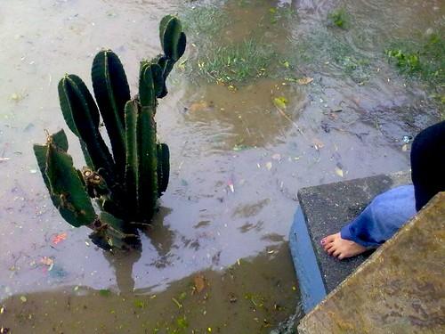 9 Repor lluvia 5