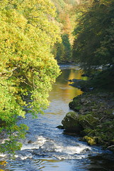 The beautiful Esk river in autumn colours