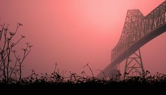 Astoria Megler Bridge (thomas.michael.) Tags: bridge pink mist oregon astoria megler wow1 mygearandme mygearandmepremium