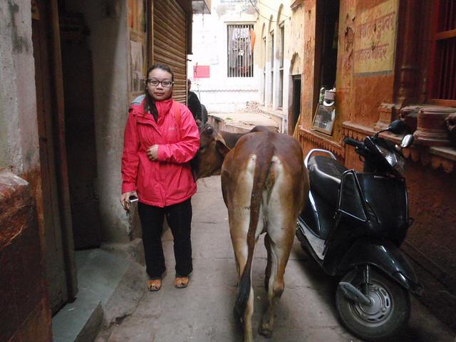 Varanasi 舊城區街景