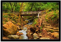 (scrapping61) Tags: california bridge forest expression waterfalls cascades excellent legacy uvascanyon tqm netart tistheseason morganhill artisticphotos 2011 lavieenrose rockpaper goldengallery artdigital uvascreek theperfectphotographer scrapping61 awardtree ilikethenature tisexcellence imagesforthelittleprince musicsbest firstofall davincimemories daarklands finestimages trolledproud trollieexcellence exoticimage heavensshots pinnaclephotography modernsclassics