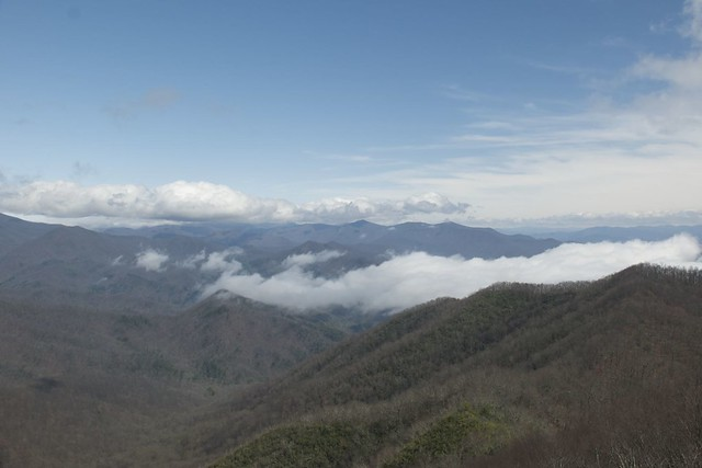 View from Shuckstack Fire Tower