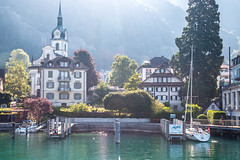 By the lakeside (shyamgn) Tags: switzerland lucerne lakelucerne green morning