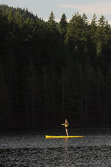 Standing strong / Uspravno (Gordana AM) Tags: wwwgordanaphotocom gordanamladenovic gordana photography photographer photo portcoquitlam bc britishcolumbia vancouver lowermainland canada lepiafgeo buntzen port moody pnw lake evergreen forest background sup stand up paddle paddler yellow woman vivid contrast vertical paddling outdoor activity summer june
