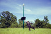 Waintingfor (Dwam) Tags: sky sun hat umbrella ginger handsome redhead suit collaboration mrpan dwam