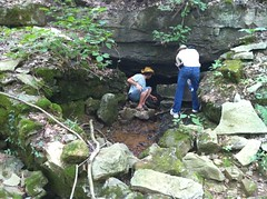 Little Short Mountain spring #1