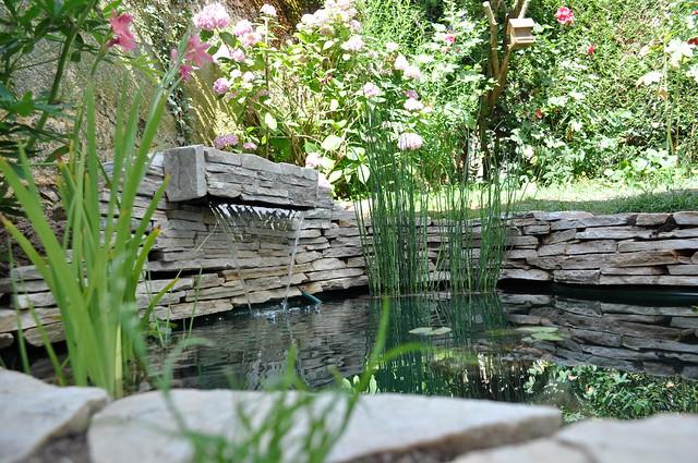 mon p'tit bassin dans mon p'tit jardin - Page 2 4842889945_6cf7d3c235_z