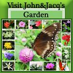 John&Jacq's Garden