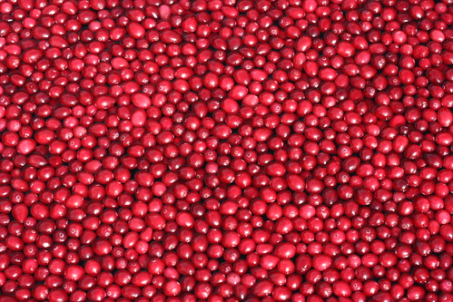 Oceanspray Cranberry Pond