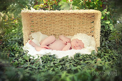 .daydream. (*miss*leah*) Tags: baby girl hat outside nikon basket crochet dream ivy babygirl newborn asleep daydream newbornphotography nikond700 leahhoskins professionalchildphotographer professionalnewbornphotographer