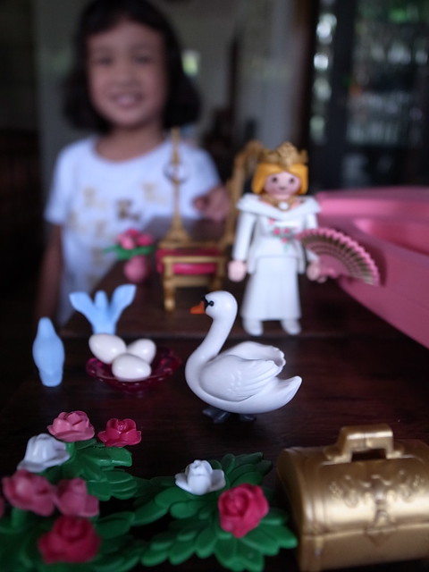Sophia and Lily's Playmobil