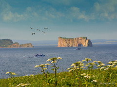 Le Rocher perce (Jacquin-Qc) Tags: topshots photosandcalendar worldwidelandscapes panoramafotografico theoriginalgoldseal flickrportal rocherperce