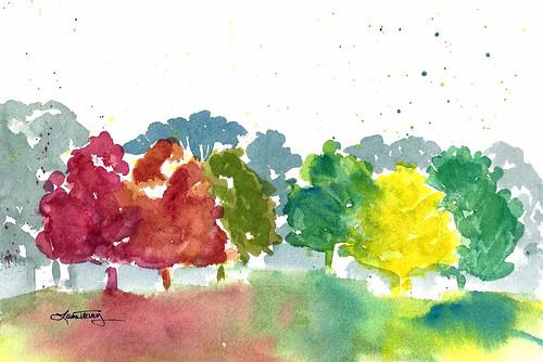 Fall foliage ~ The colors of Autumn