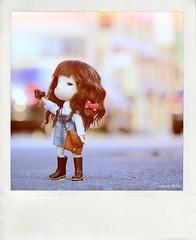 >__^ y (sndy) Tags: yoshitomonara secretdoll persons8