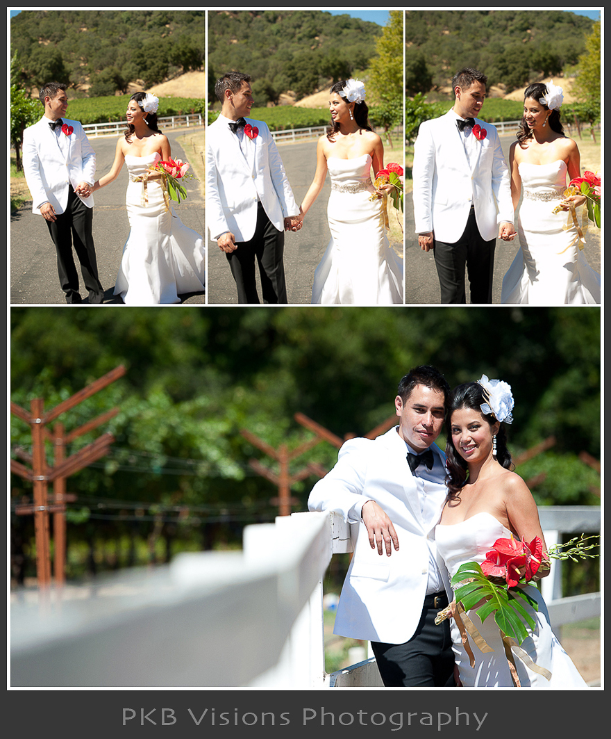 tiffa_braz_wedding_14.jpg