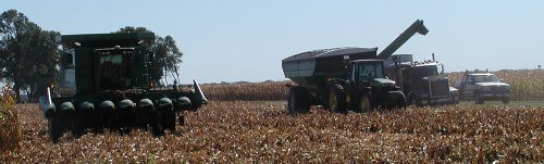 harvest09-10-10rs