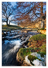 December Flow (Adam Edwards Photography) Tags: uk longexposure winter tree water field landscape flow scotland stream december bare perthshire adamedwards greatphotographers