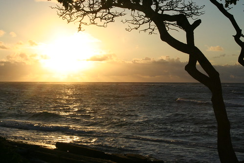 BEACH SUNRISE IN KAUAI