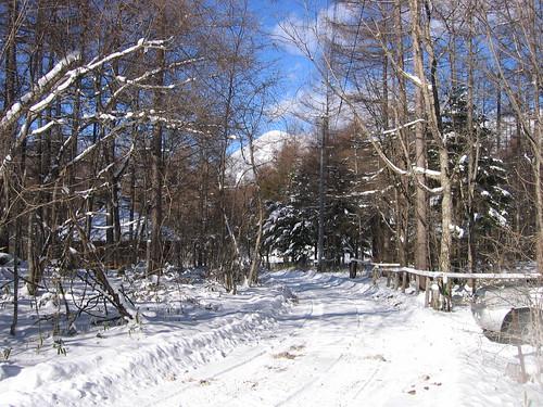 山荘前道路と蓼科山 2009.1.15 by Poran111